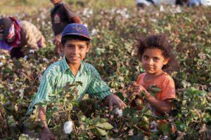 Seasonal child workers