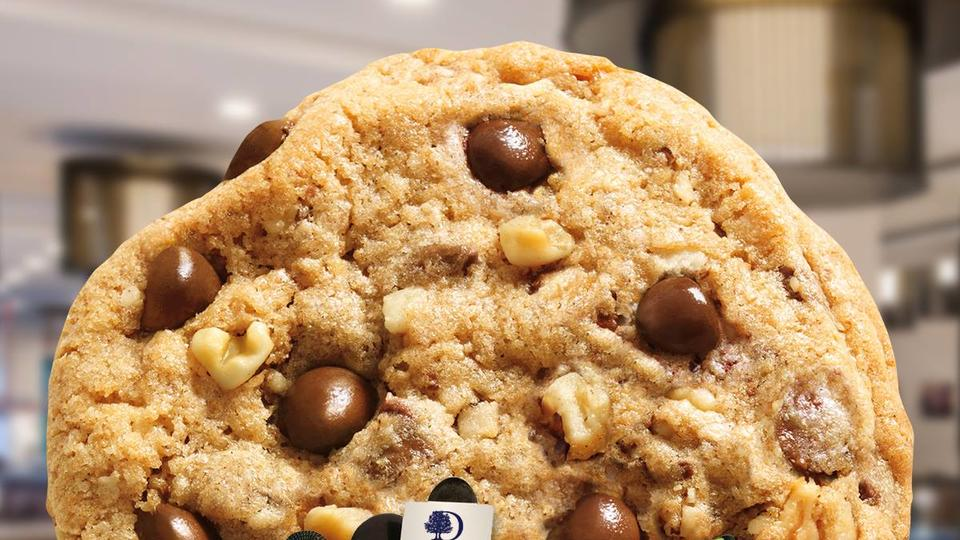 chocolate chip cookie with nuts
